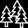 Rundpfähle aus Akazien-/Robinienholz, naturgewachsen