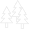 Christmas Tree Tag Tyvek (1000 Stück) mit Nummer